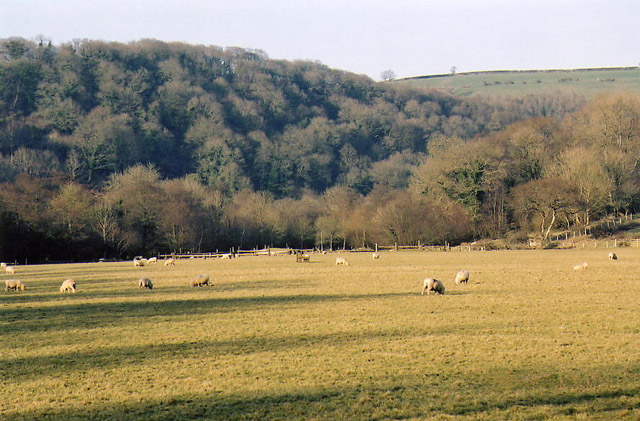 East and West Buckland: Bray valley