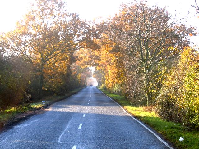 The Avenue, Madingley, Cambs