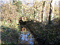 TL4162 : Washpit Brook, Girton, Cambs by Rodney Burton
