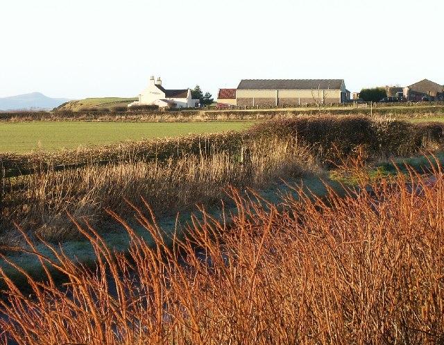Ladeddie Farm near Drumcarrow