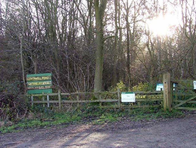 Treswell Wood Nature Reserve