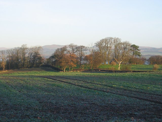 Farmland, Carriden