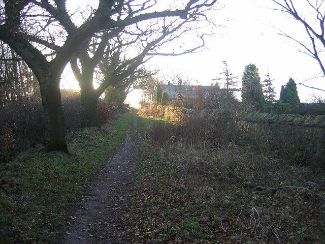 Old road, Kinneil.
