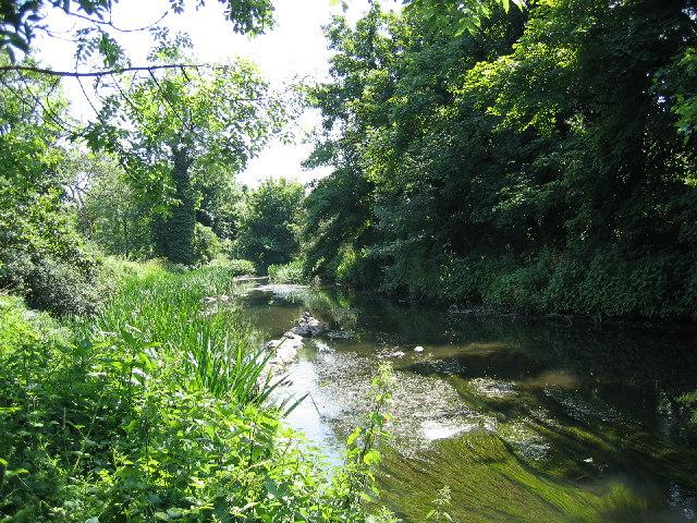 River Crane, Crane Park