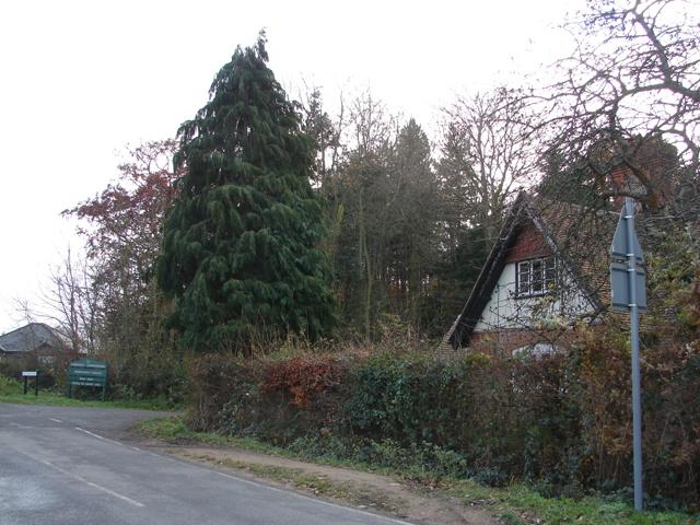 Noke Gate - Parkhurst Forest