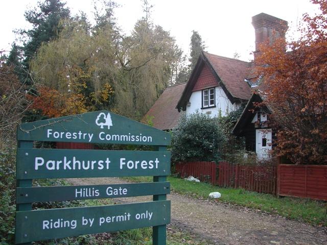 Hillis Gate - Parkhurst Forest