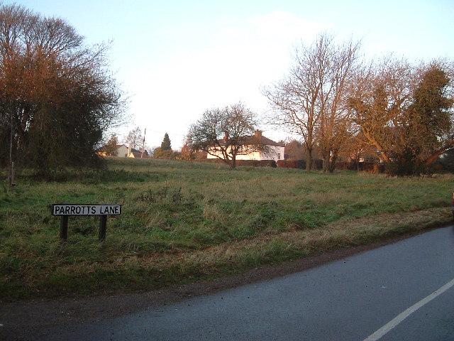 A Common off Parrott's Lane, Buckland Common