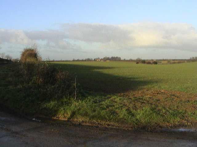 Field from Folly