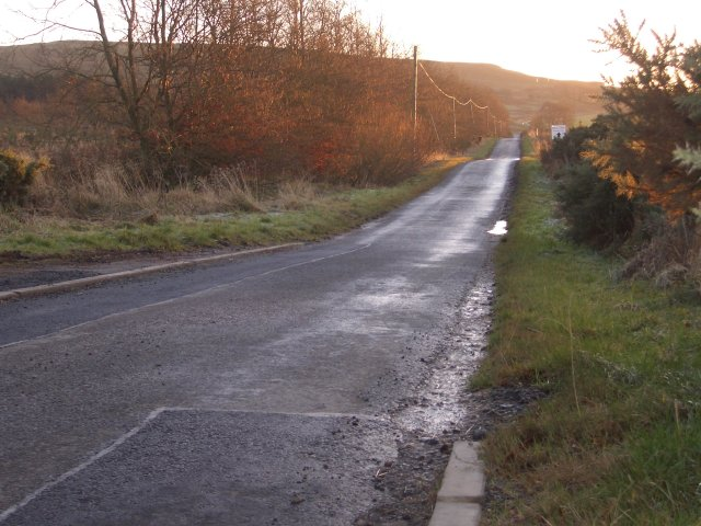 Road to Morton