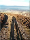 NT5262 : Long shadows on Lammer Law by Steve Kent