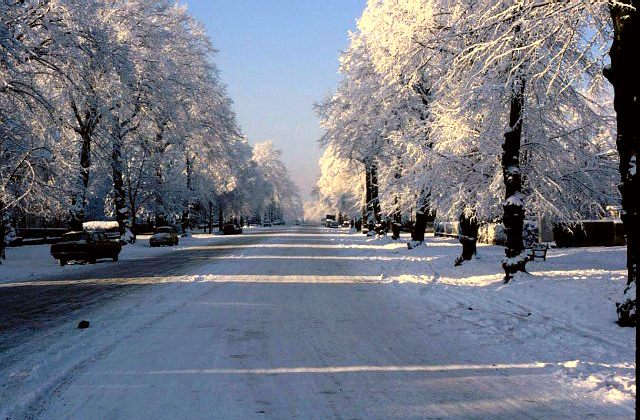 Binswood Avenue in the sun and snow