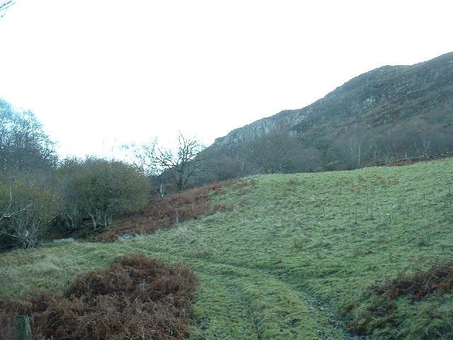 Slopes of Moel y Gest