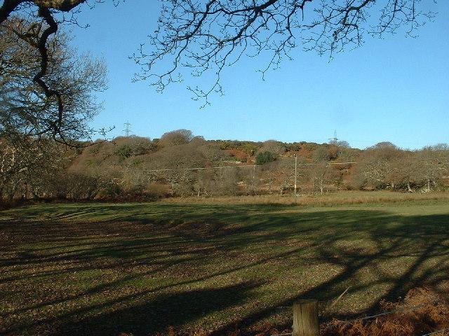 Farmland near Pentrefelin