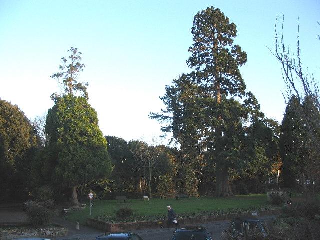 Soissy-sur-Seine Gardens, Westbury