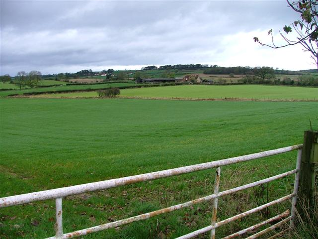 Across the Fields to Walworth Moor Farm