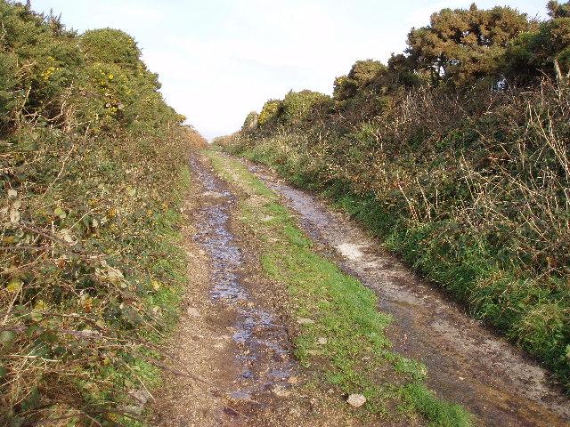 Farm lane to Trevegean