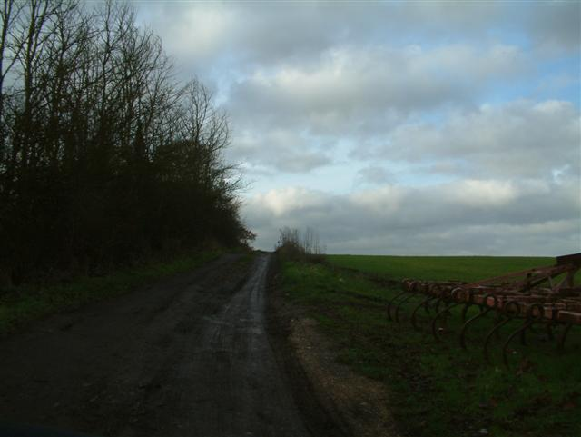 The  Road  to Gotham Farm
