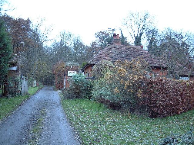 Redwell Wood