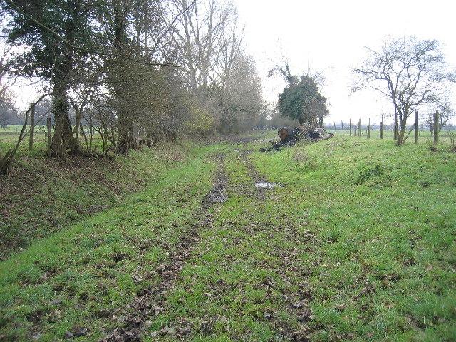 Green lane to Alveston Sluice