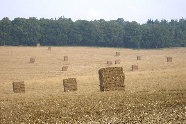 Looking over straw bales, in September,  to Caesar's Belt