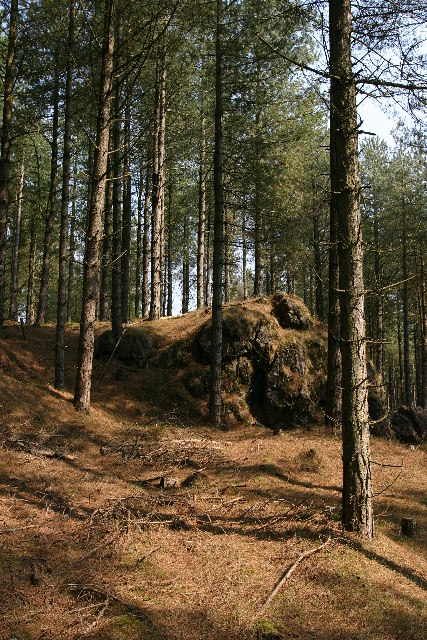 Newborough Forest - Anglesey