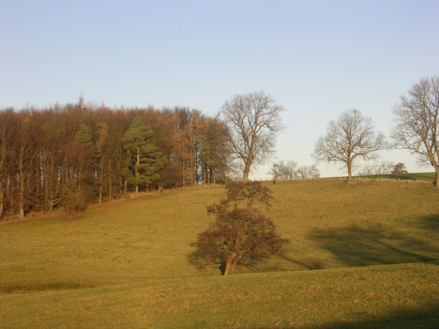 Farmland at Wycliffe Hall, near Barnard Castle