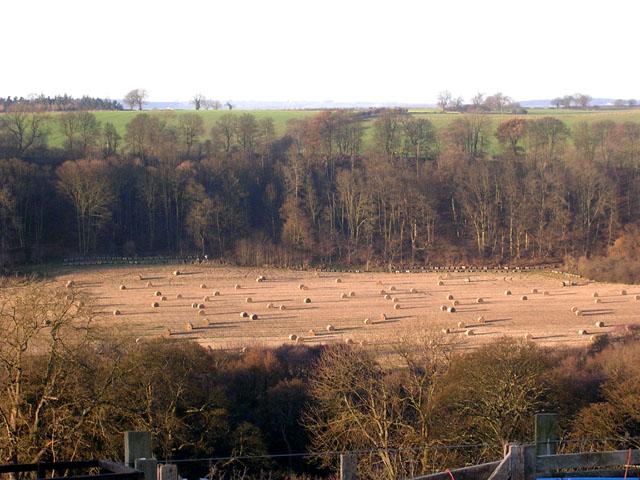 Tees Valley, Ovington, near Barnard Castle