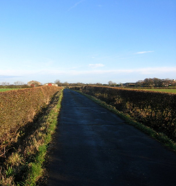 Road to West Farm