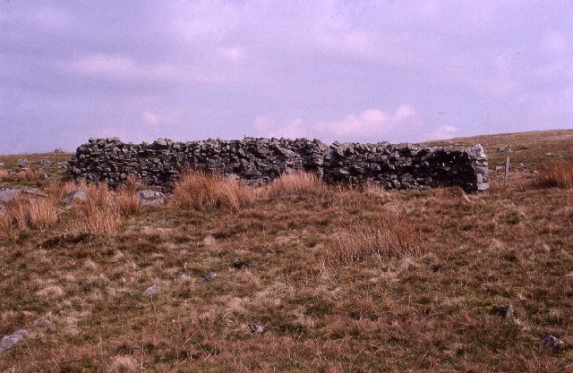 Sheep Fold on West Baugh Fell