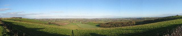 Charlton Down Panorama