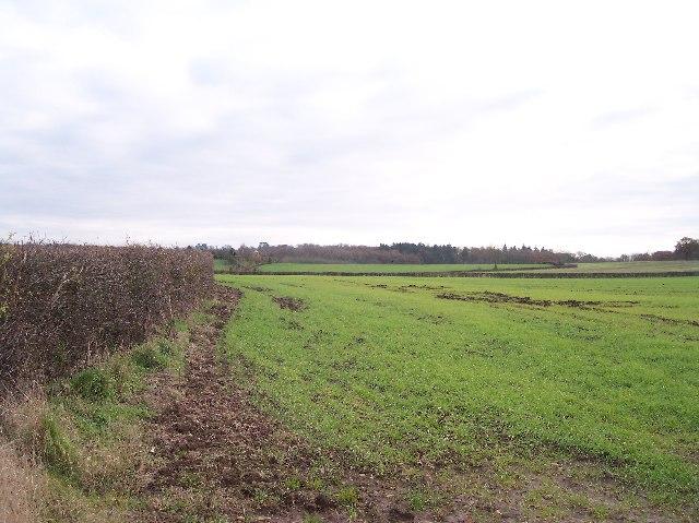 Rundlesshill Farm