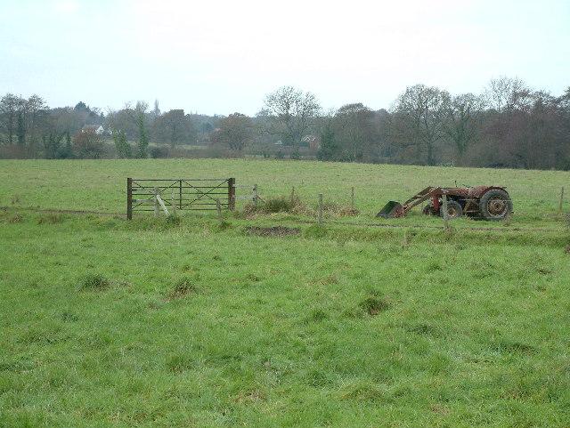 Uddens Park, Dorset