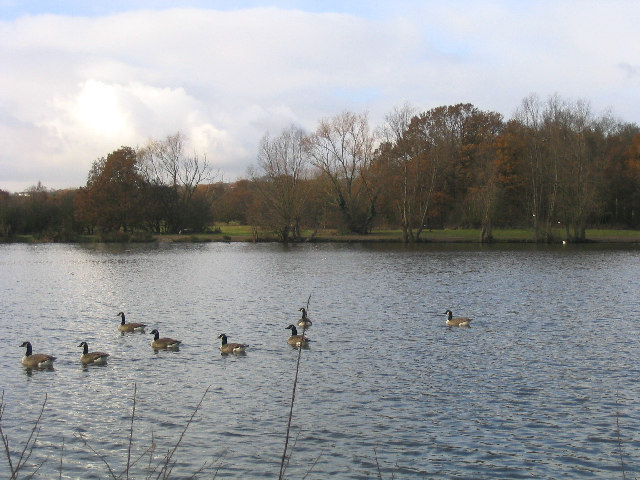 The Lake, Hainault Forest Country Park