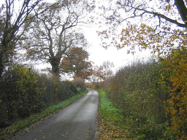 A country lane, Abridge