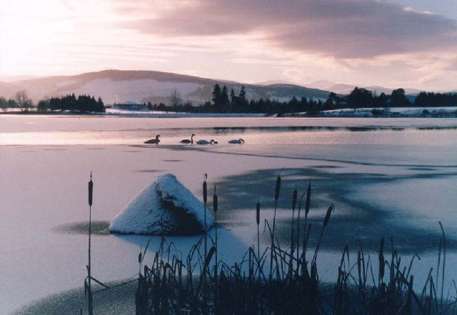 Loch of Aboyne