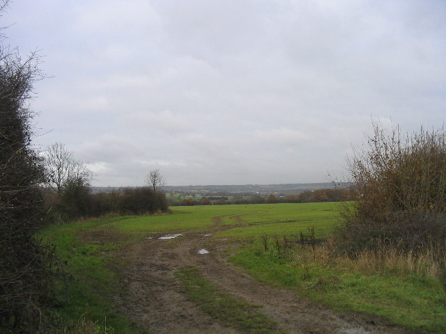 Farmland near Abridge
