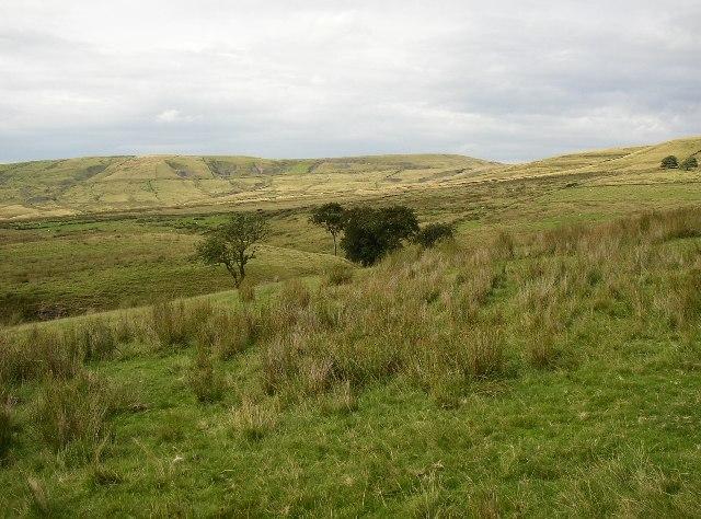 Abandoned Fields, Wardle