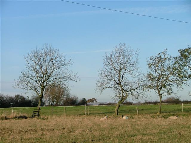 View North West from Ashfield