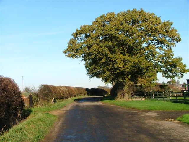 Unclassified Road, Castle Hill Farm