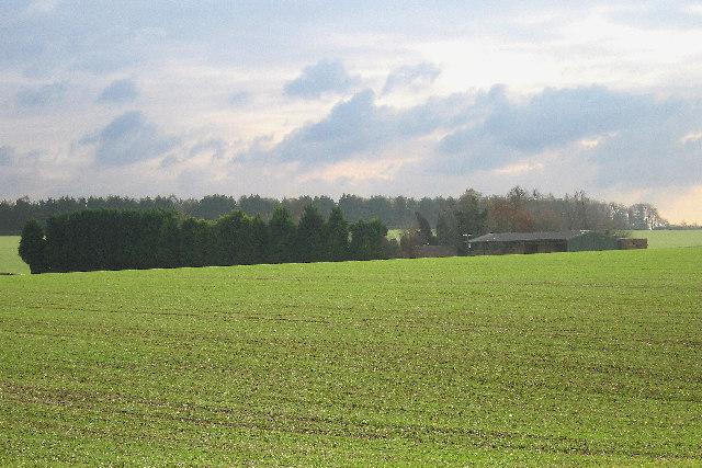 View across fields to Flint Farm