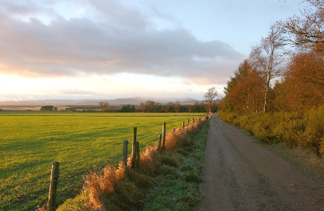View to North West from Denlethen Wood