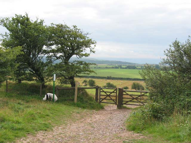 Stile above Tynings Farm