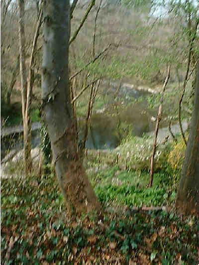 Edw River near Aberedw