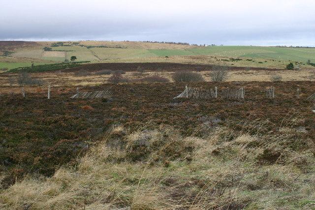 Moorland near Corsemaul
