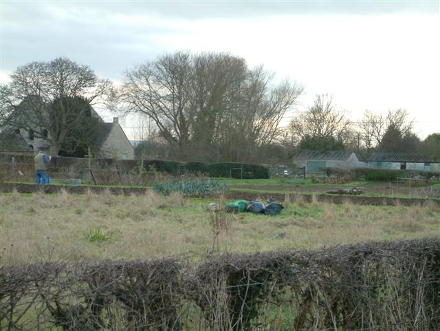 Working the Allotments, Cote