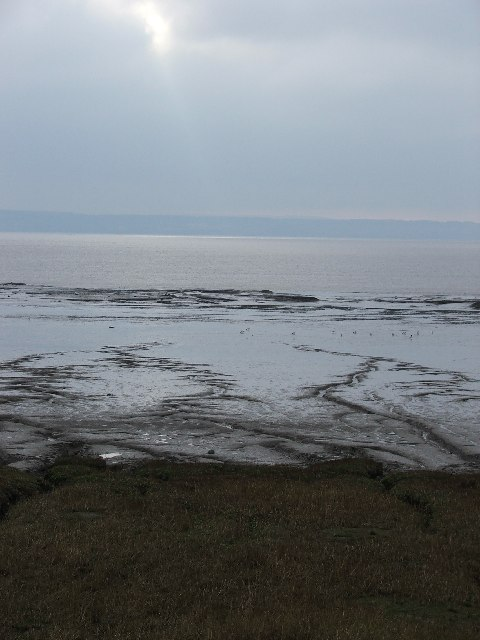 Saltmarsh of the Severn Estuary, Redwick