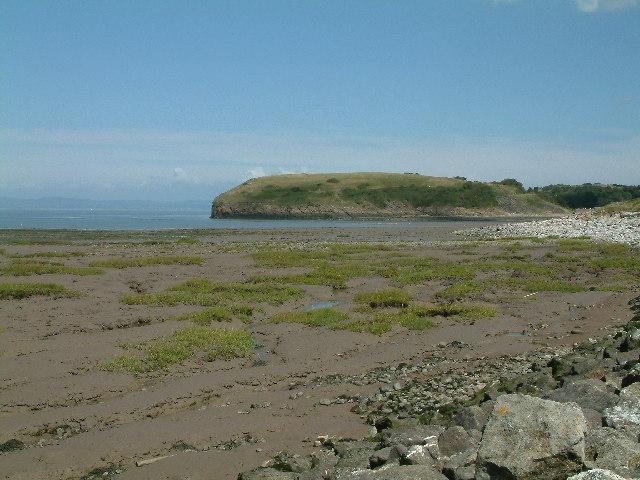 Saltmarsh at Gullhouse Point