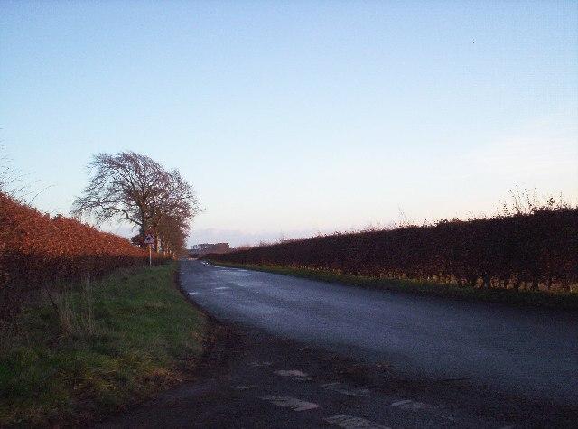 Road Between Stracthro and Dun