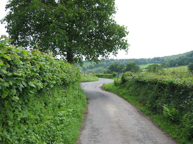 Country road near Coed-y-paen