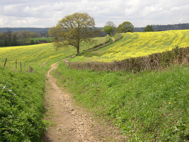 Track between Manor Farm and Halfpenny Furze